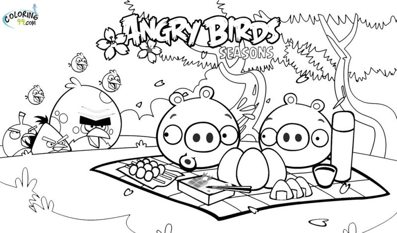 Angry Birds Coloring Pages Green Bird