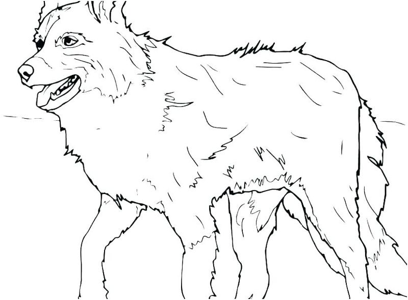 Animals Coloring Pages Printable