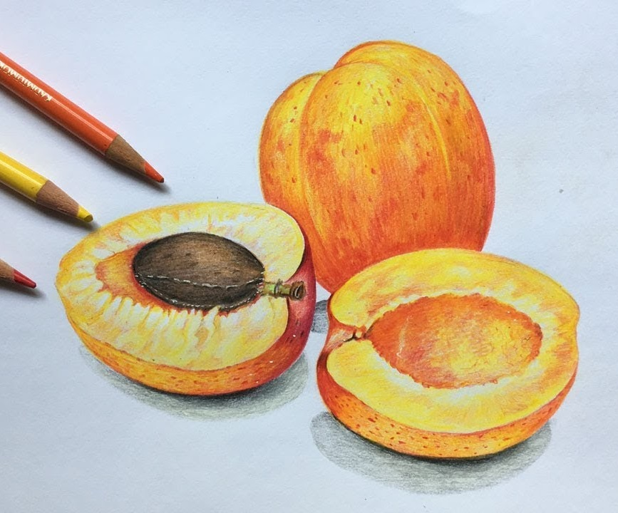 Apricot Coloring