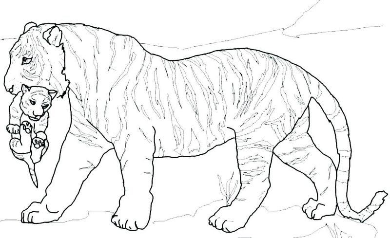 Auburn Tigers Coloring Pages