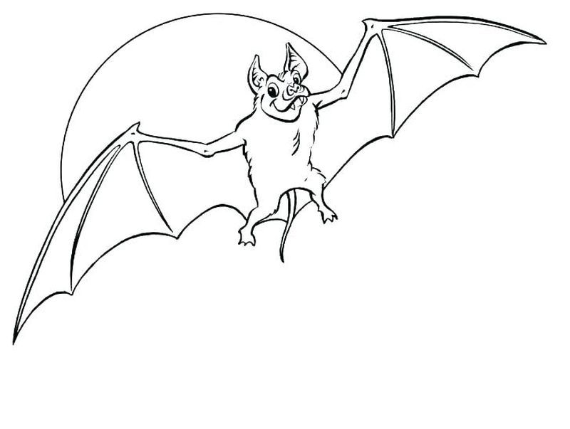 Bat Coloring Pages For Adults