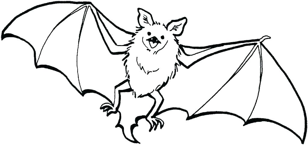 Bat Coloring Pages For Halloween