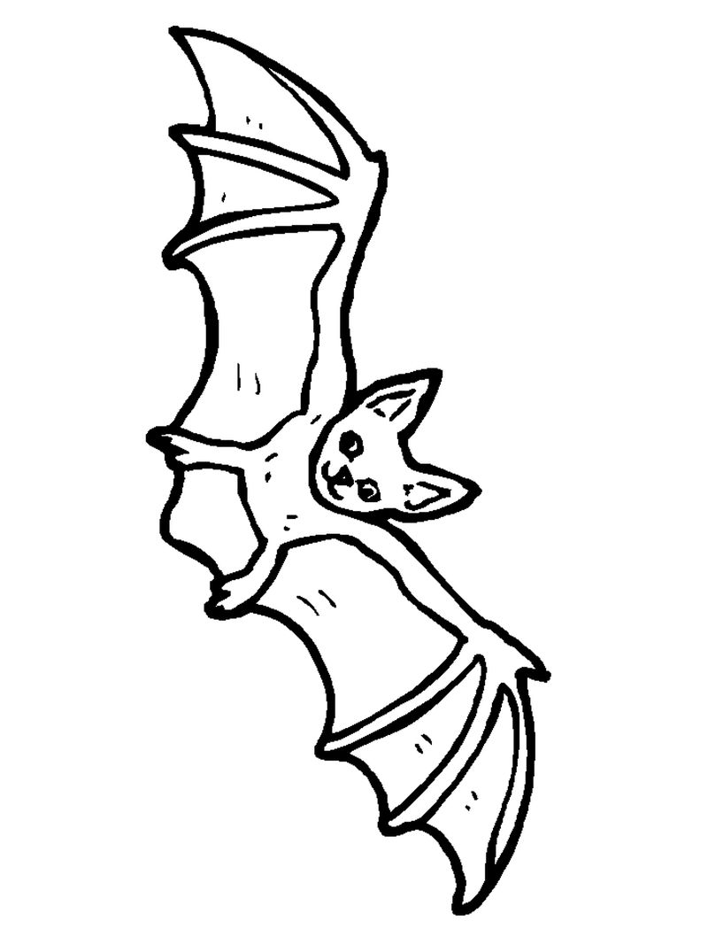 Bat Coloring Pages For Spring