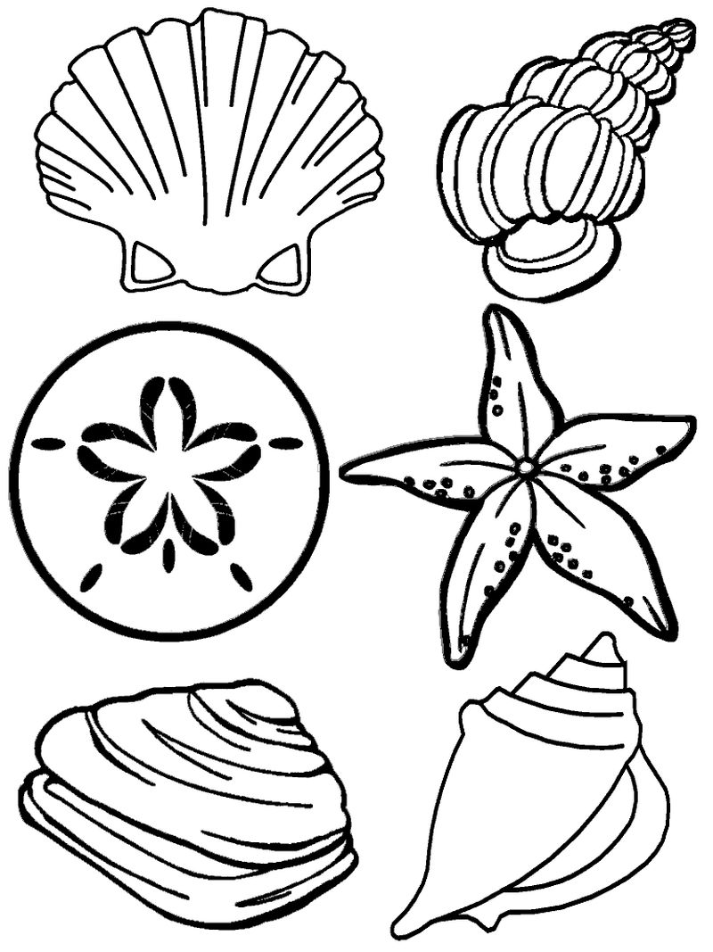 Beach Animal Coloring Pages