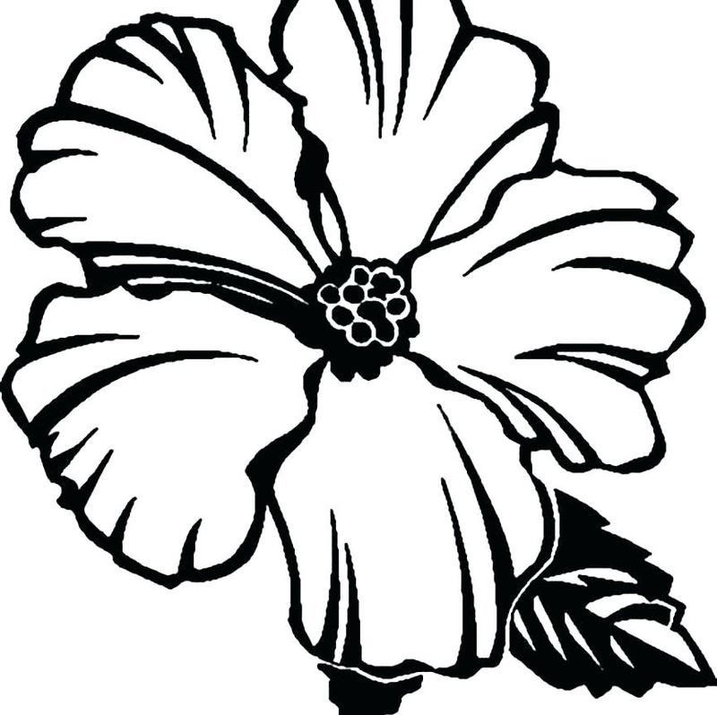Bees And Flowers Coloring Pages