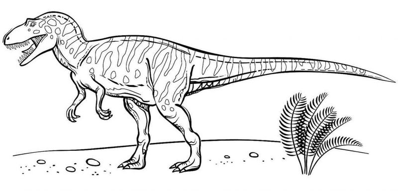 Birthday Dinosaur Coloring Pages