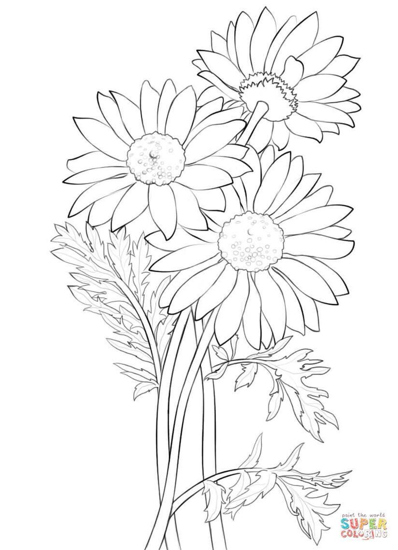 Birthday Flowers Coloring Pages