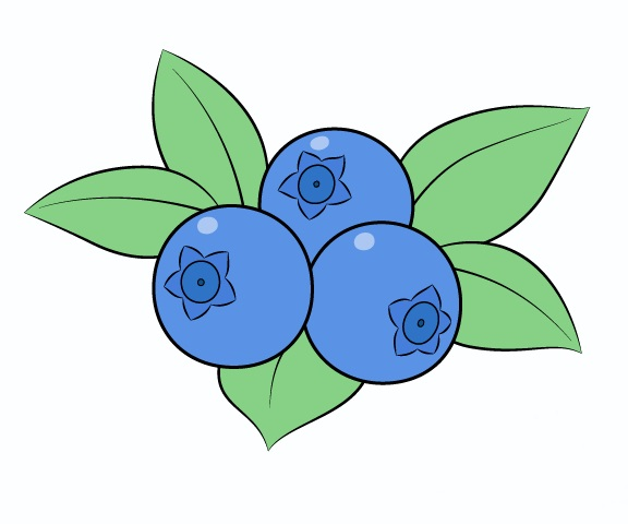 Blueberry Coloring