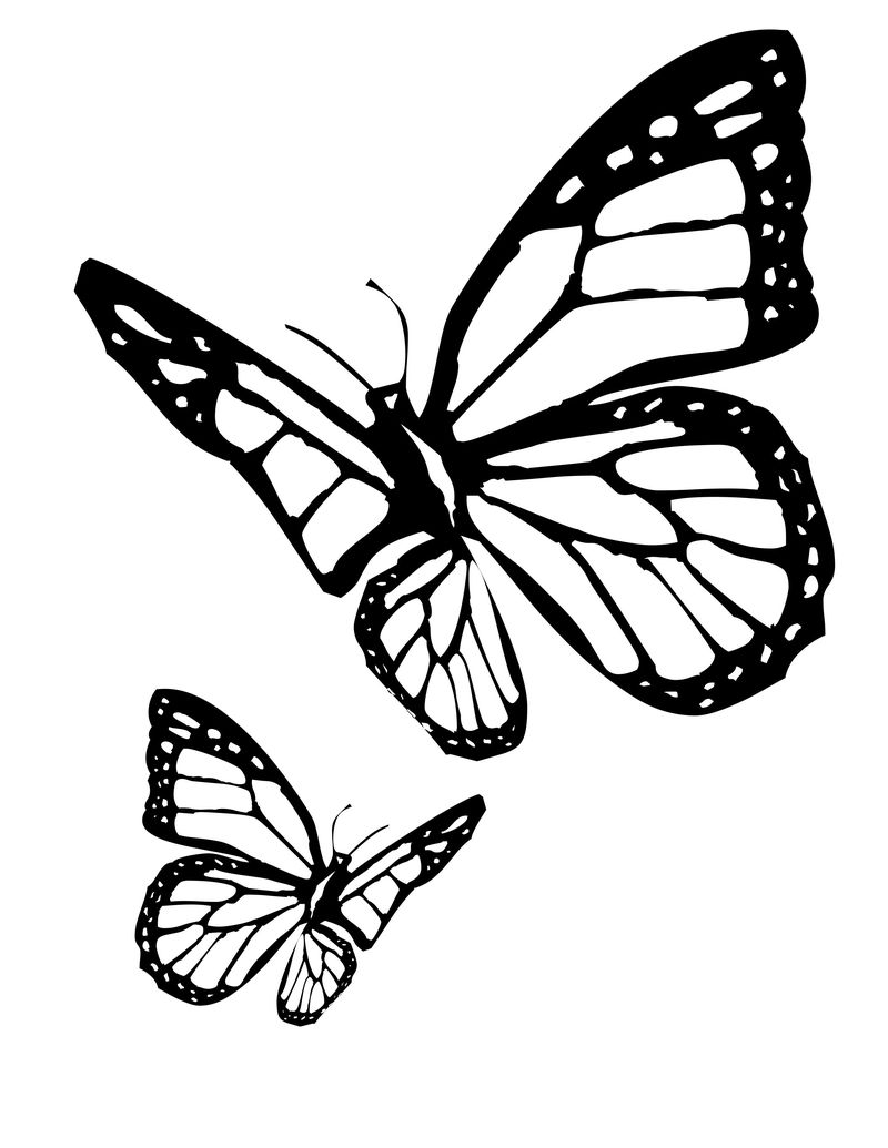 Butterfly Coloring Pages Printables