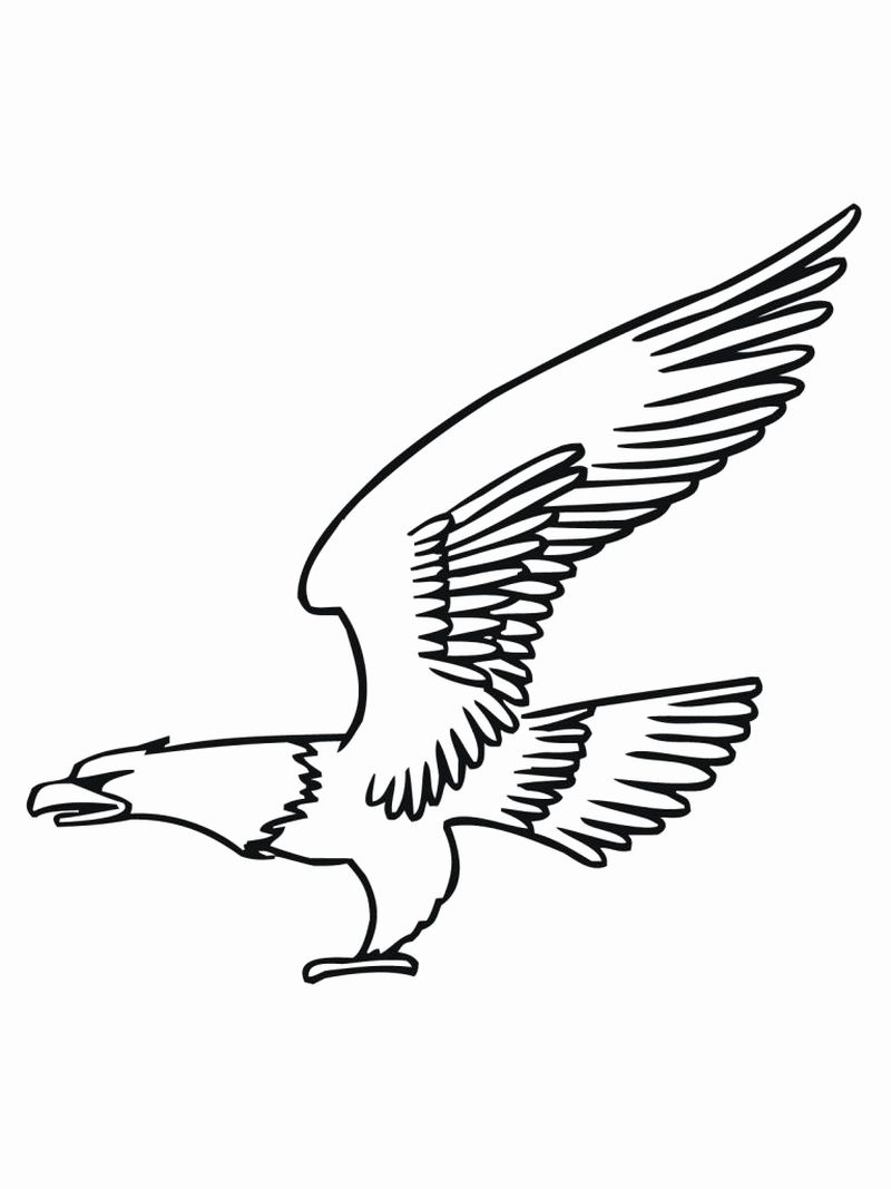 Cartoon Eagle Coloring Pages