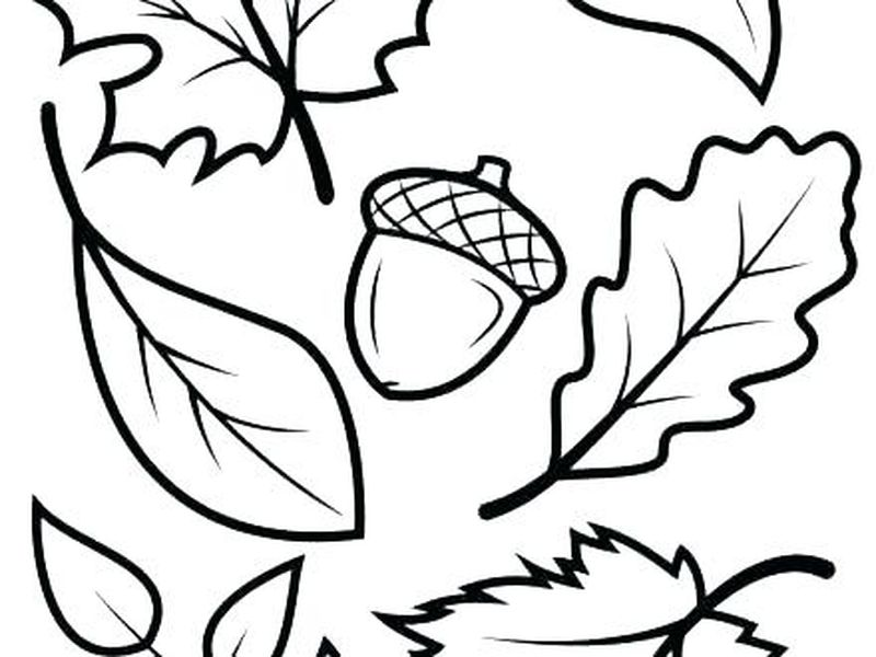 Cartoon Leaf Coloring Pages