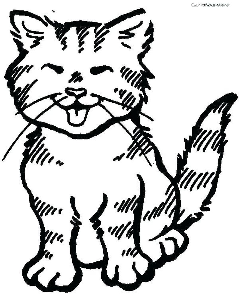 Cat Kitten Coloring Pages