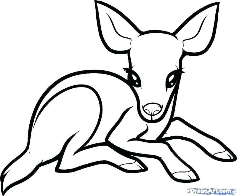 Christmas Deer Coloring Pages To Print
