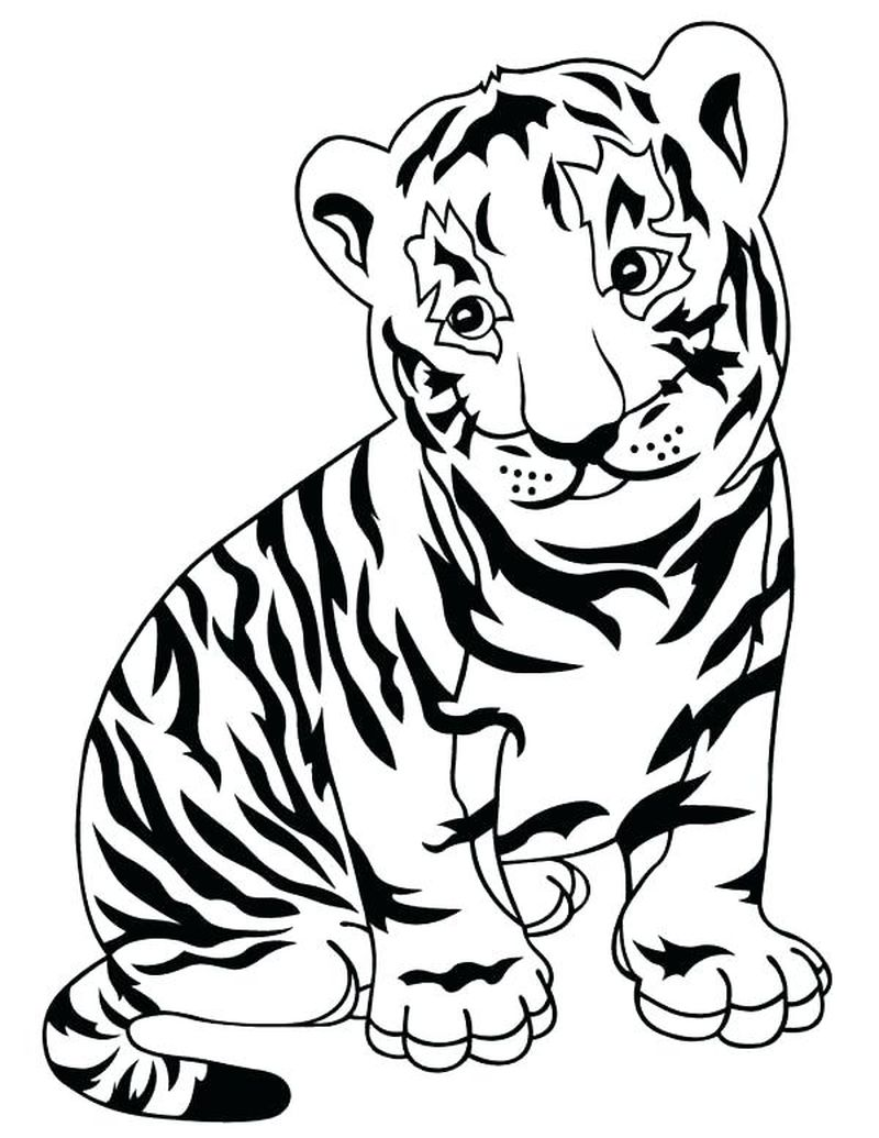 Circus Tiger Coloring Pages
