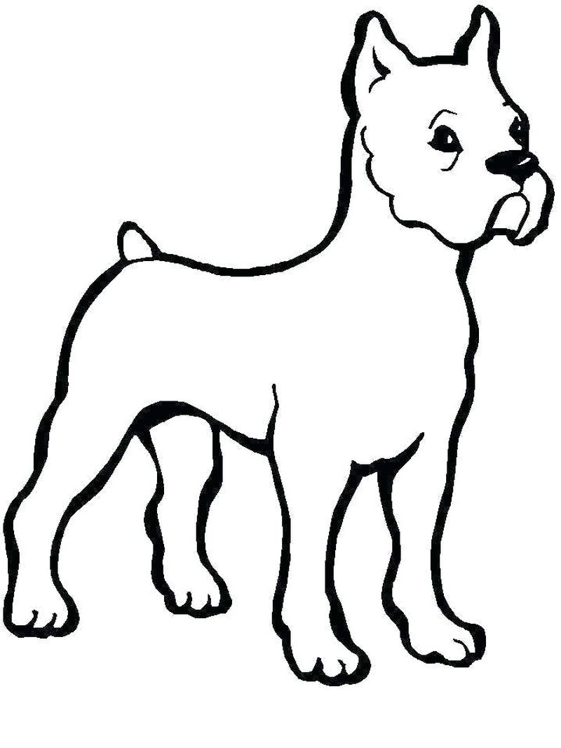 Coloring Pages About Dogs