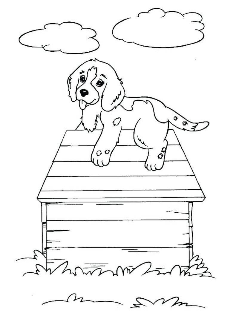 Coloring Pages Adults Dogs