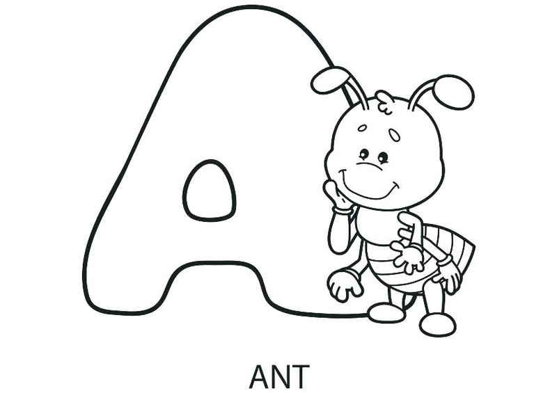 Coloring Pages Animals Hard