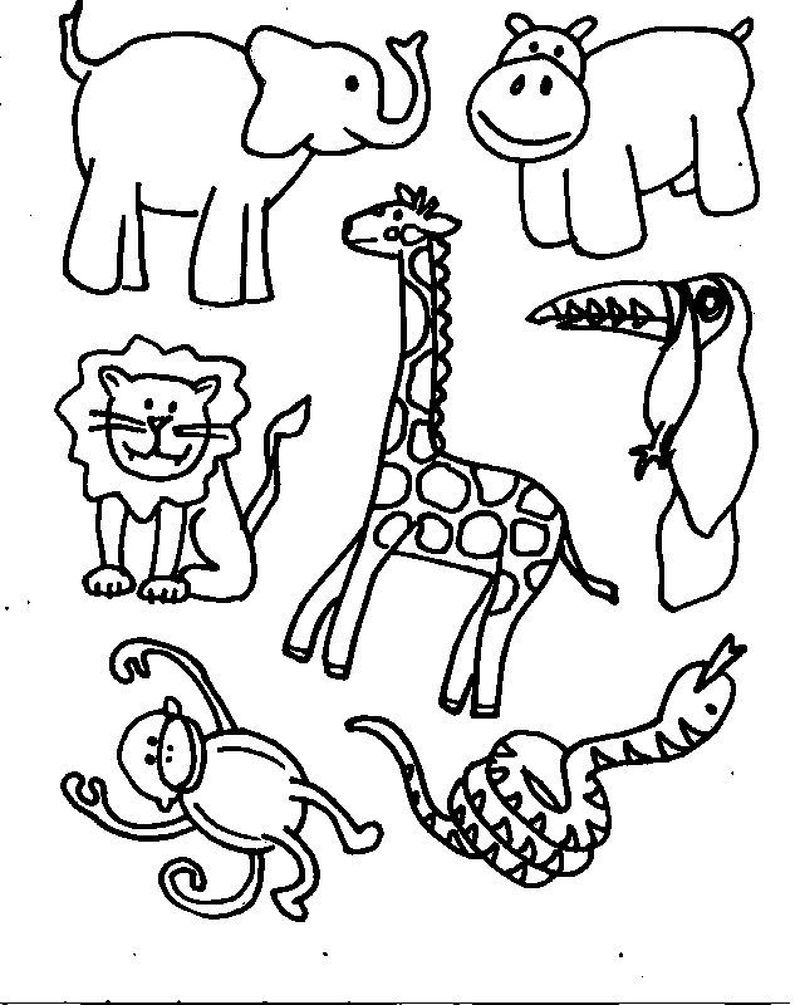Coloring Pages Animals Realistic