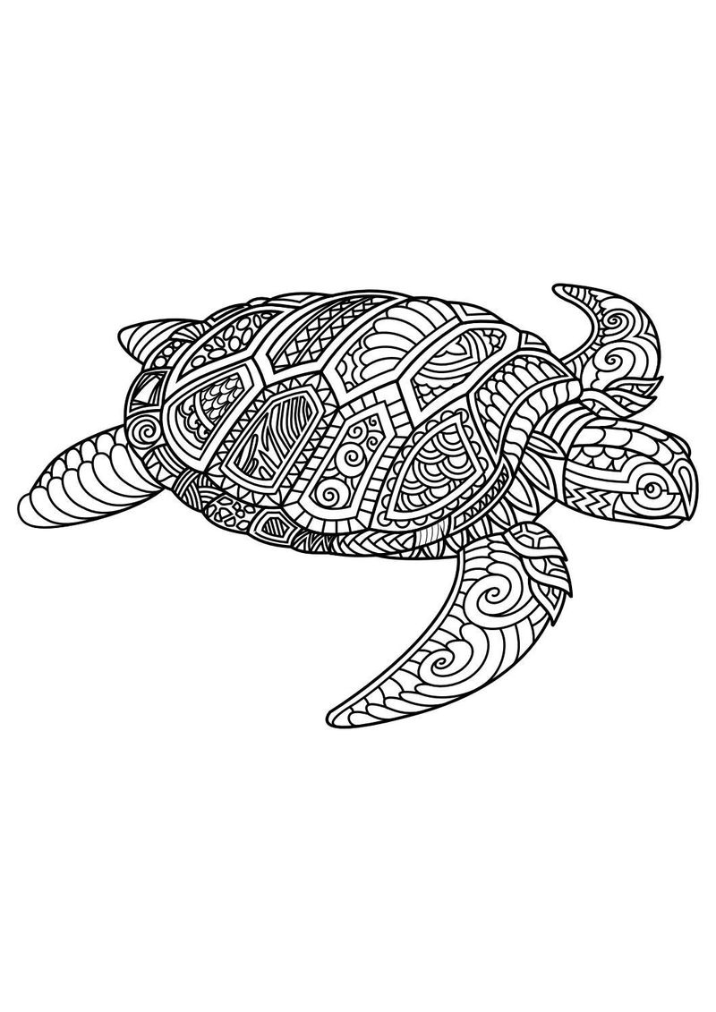 Coloring Pages Baby Animals