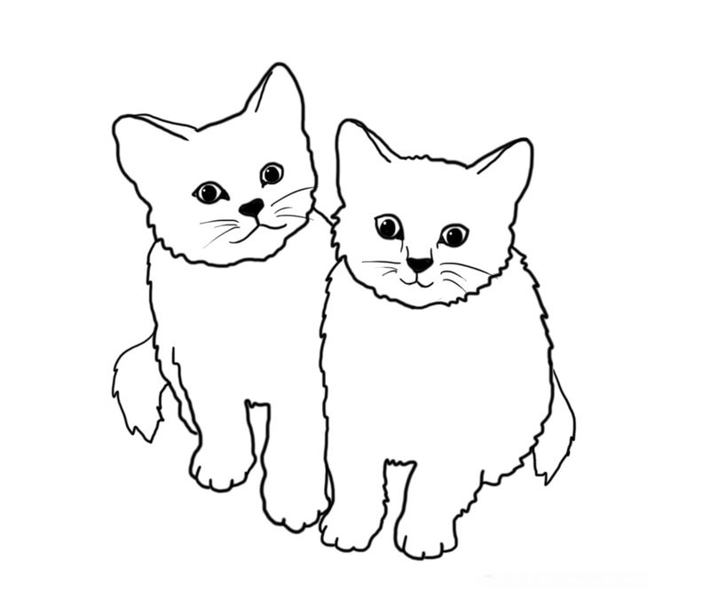 Coloring Pages Cats For Adults