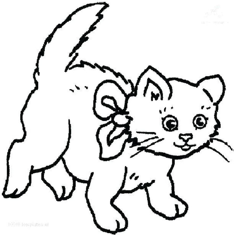 Coloring Pages Cats Free