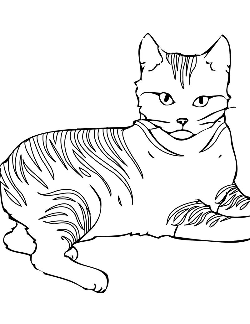 Coloring Pages Cats Playing
