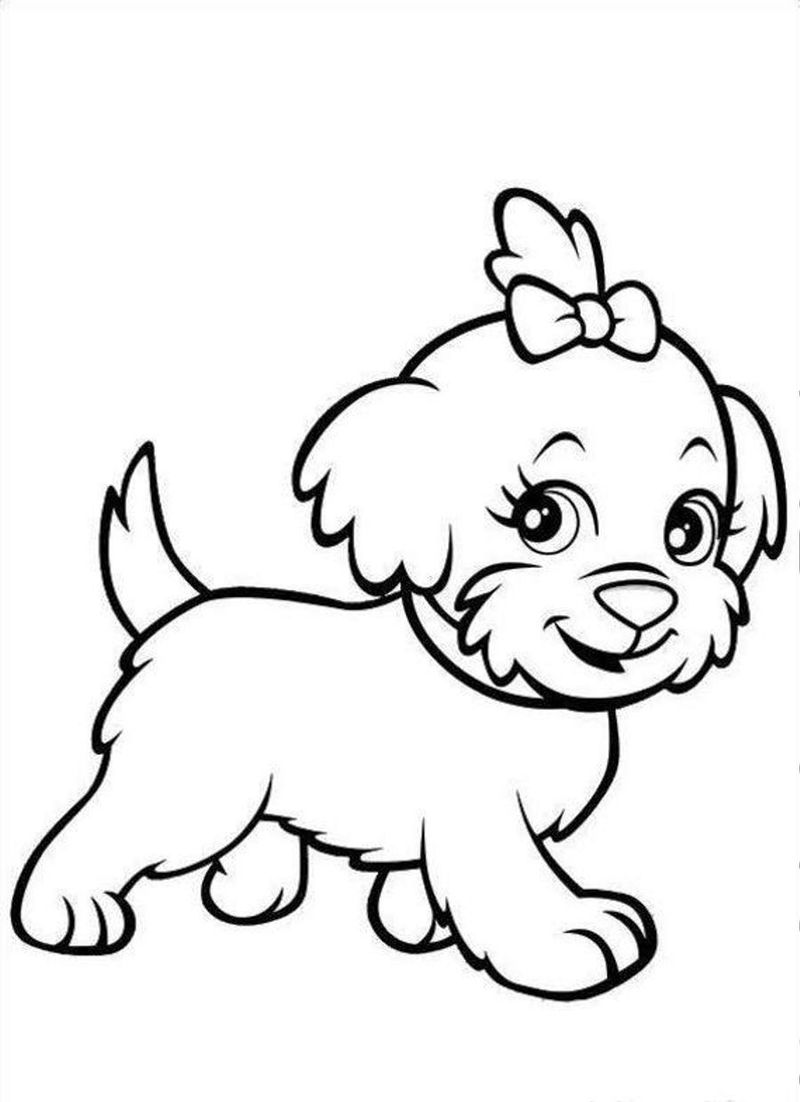 Coloring Pages Cute Baby Animals