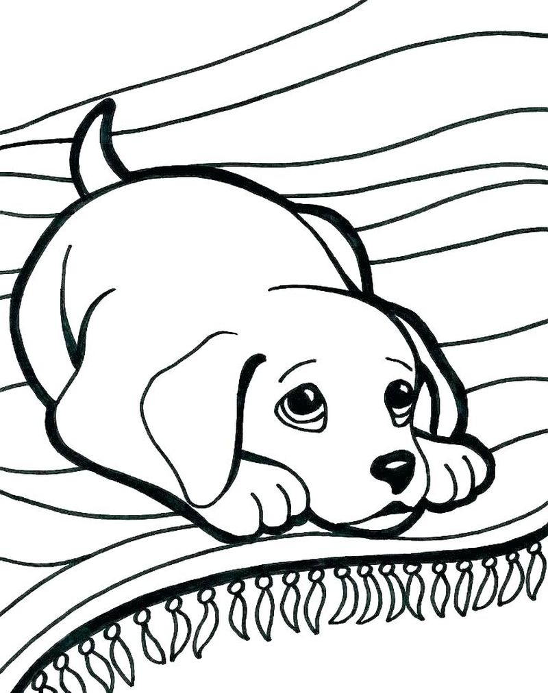 Coloring Pages Cute Dogs Puppies