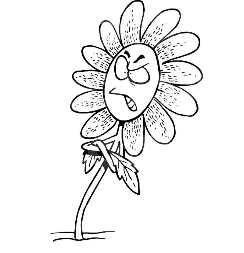 Coloring Pages Daffodil Flowers