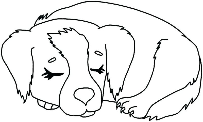 Coloring Pages Dogs And Cats