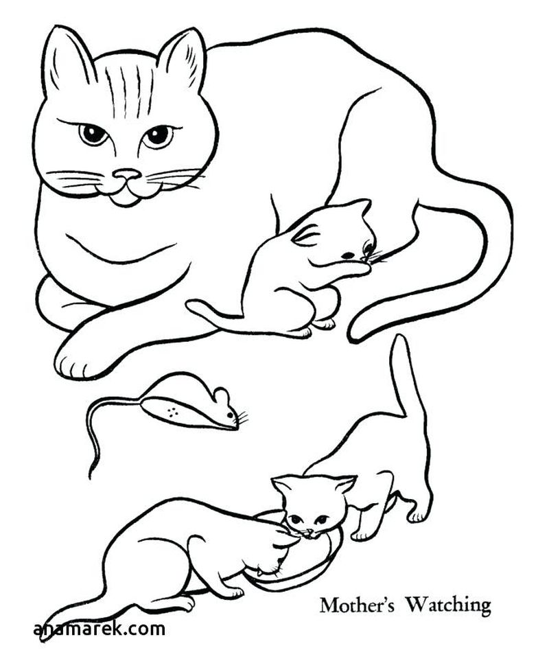Coloring Pages Dogs Breeds