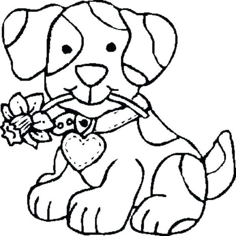 Coloring Pages Dogs Cats