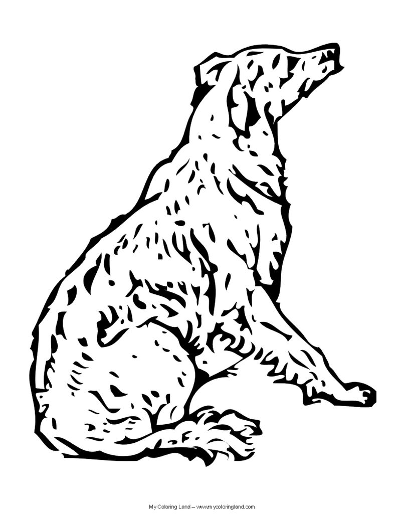 Coloring Pages Dogs For Adults