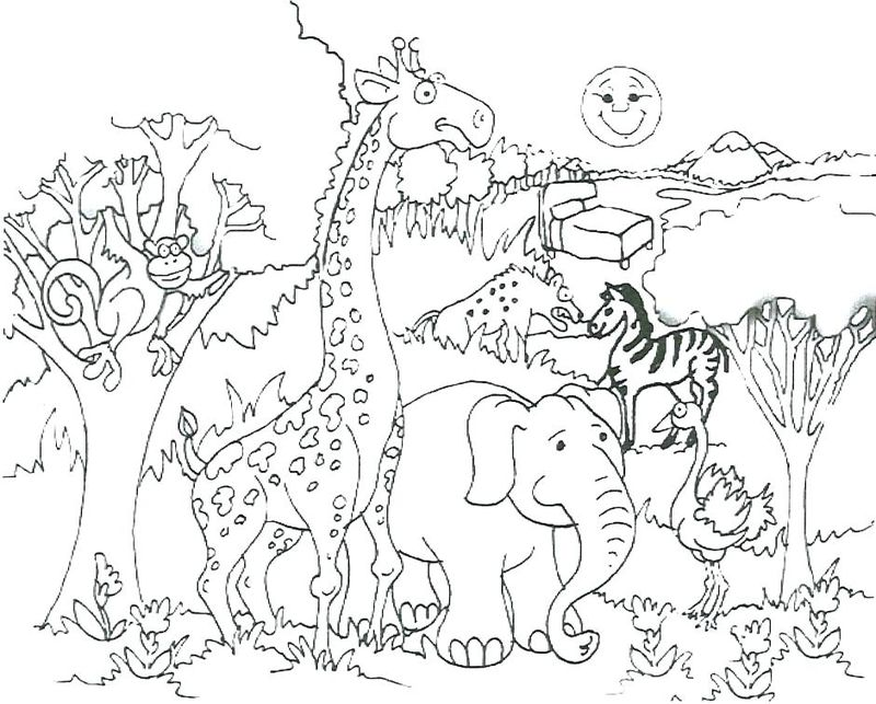 Coloring Pages For Animals