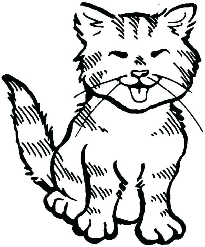 Coloring Pages For Cats