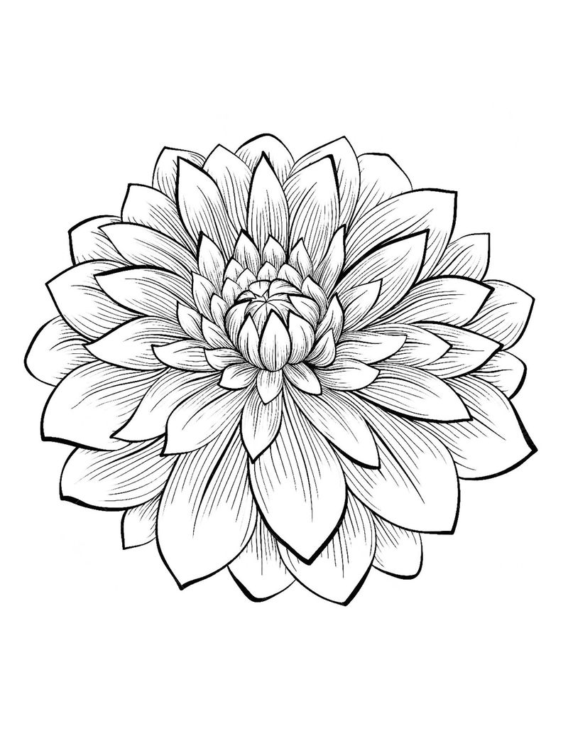 Coloring Pages For Flowers Printable