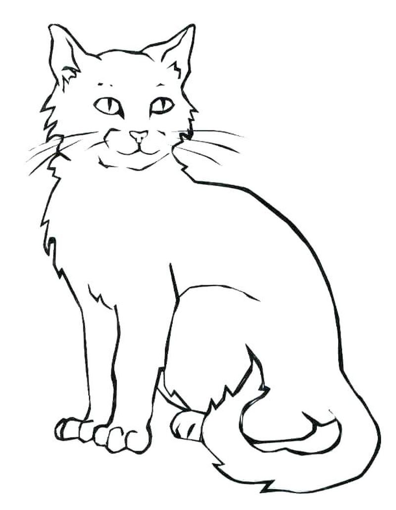 Coloring Pages For Halloween Cats