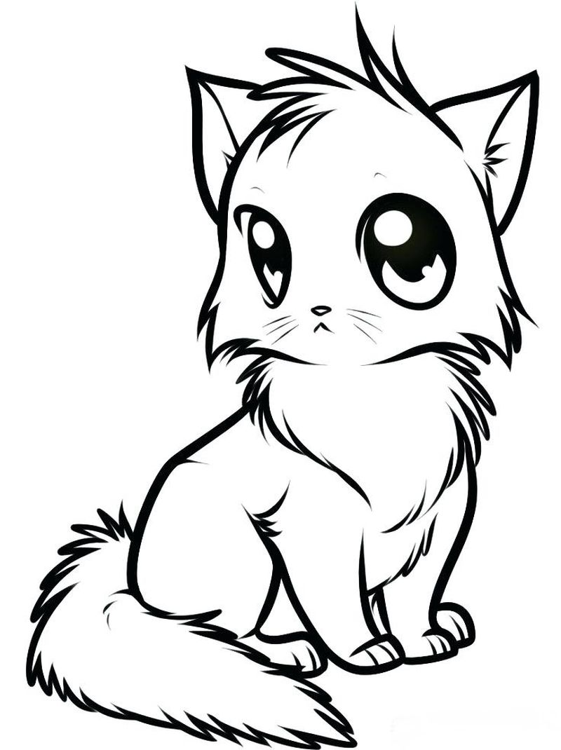 Coloring Pages Kitty Cats