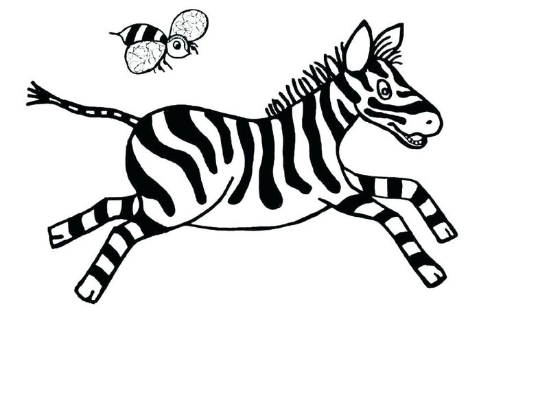 Coloring Pages Of A Zebra