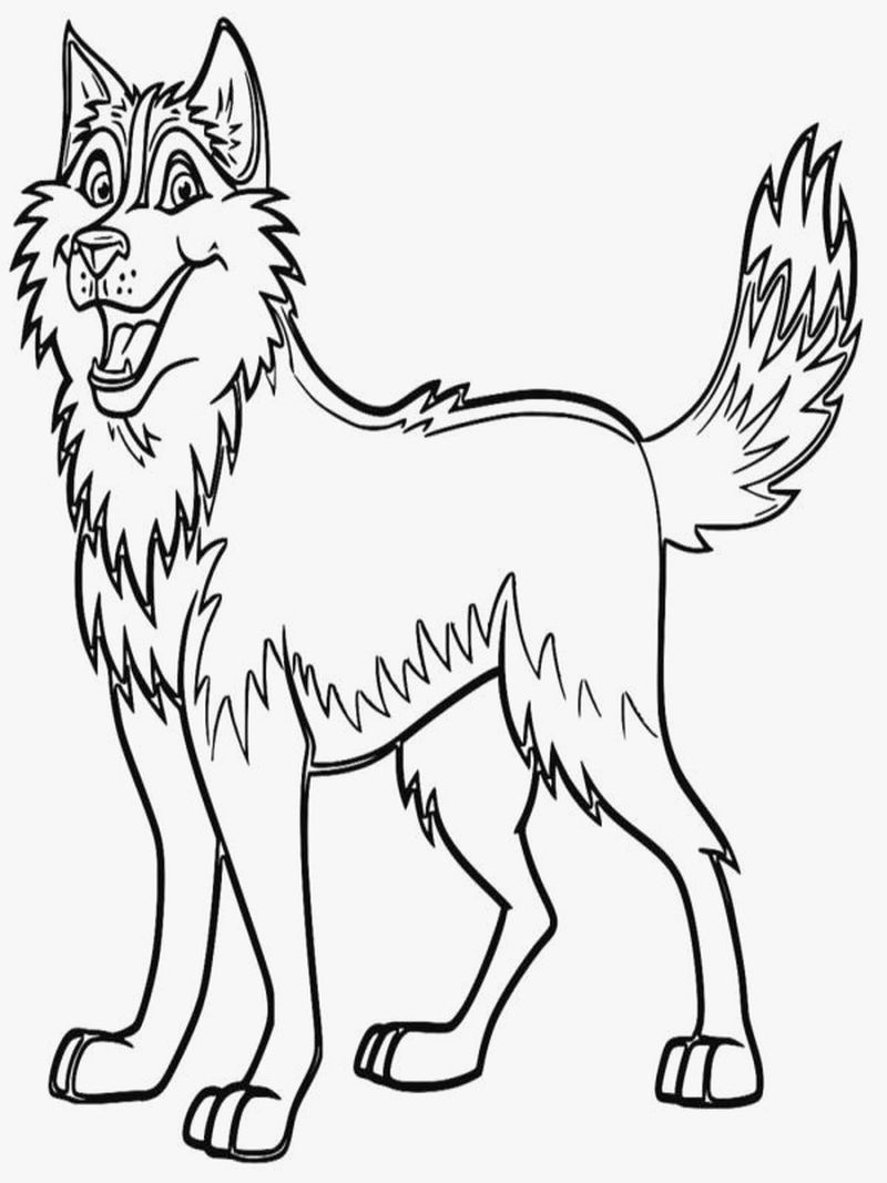 Coloring Pages Of Baby Animals