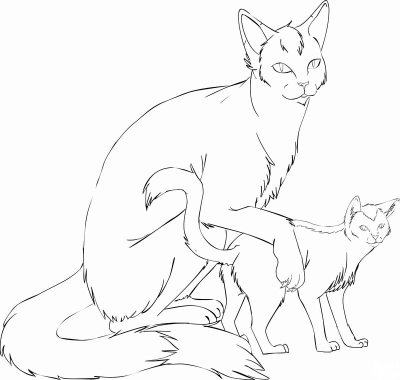 Coloring Pages Of Cats For Adults