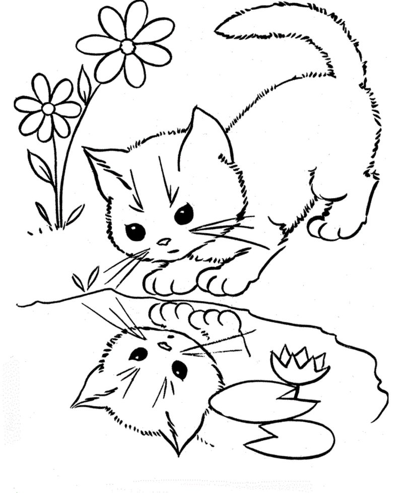 Coloring Pages Of Cats For Preschoolers