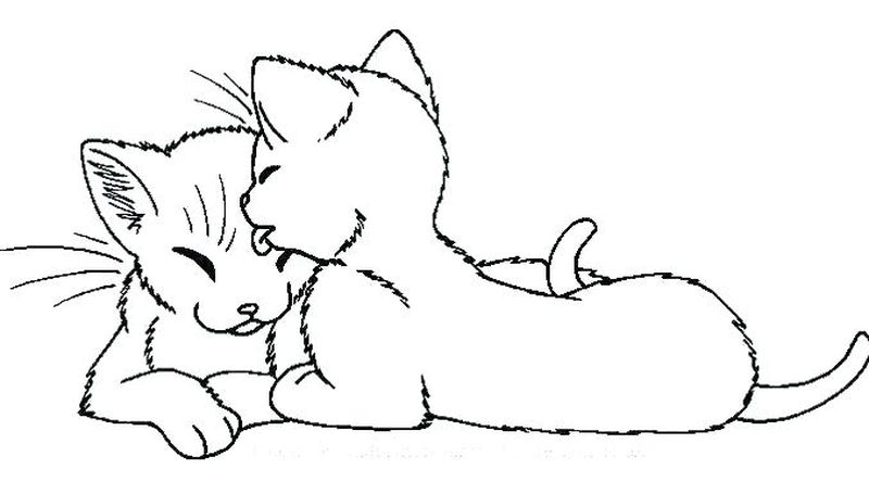 Coloring Pages Of Cats Printable