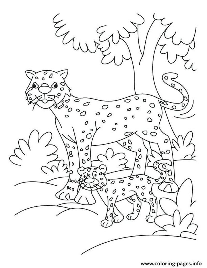 Coloring Pages Of Cheetah