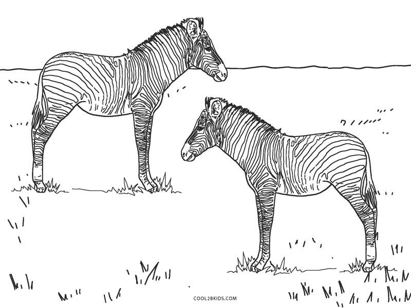 Coloring Pages Of Zebra Crossing