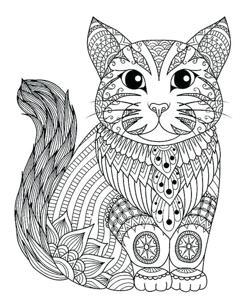Coloring Pages Pusheen Cats