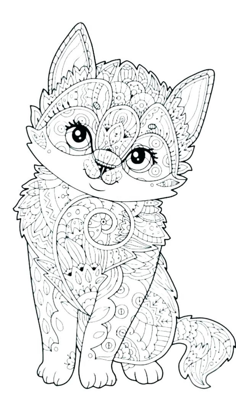 Coloring Pages Warrior Cats
