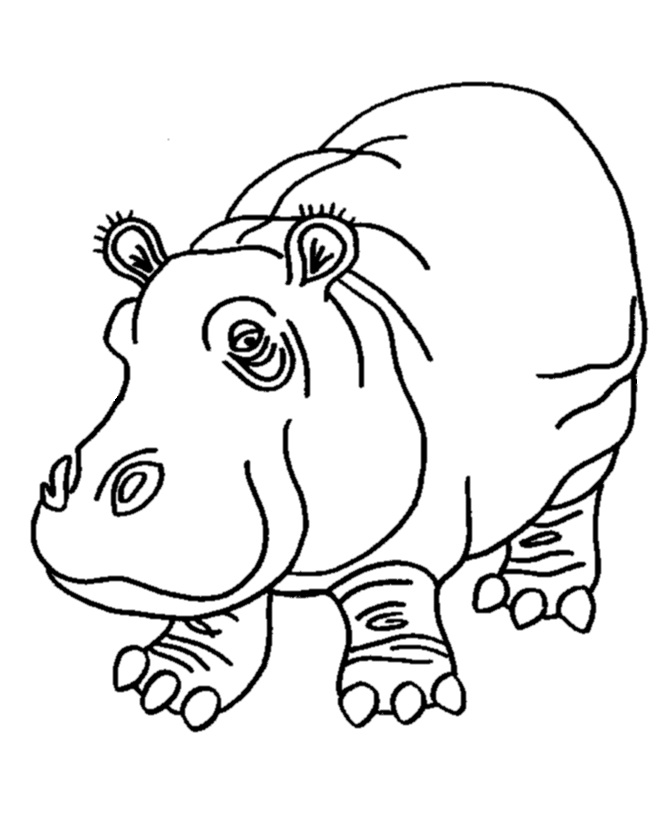 Coloring Pages of Hippo Print