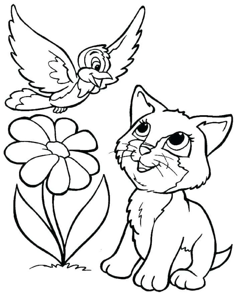 Colouring Pages Cute Cats