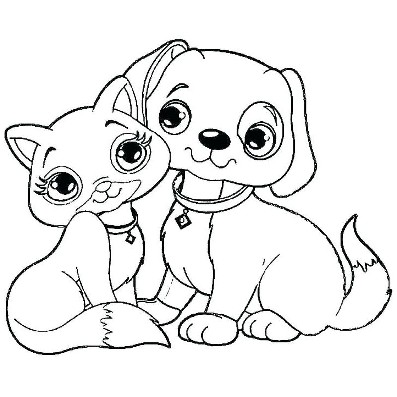 Colouring Pages Dogs And Cats